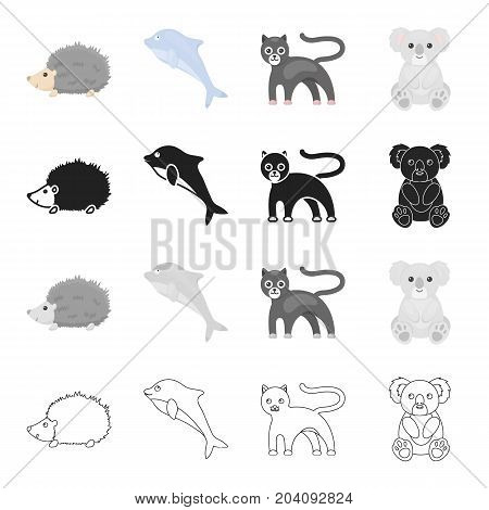 Wild animal panther, prickly hedgehog, clever dolphin, koala. Animals set collection icons in cartoon black monochrome outline style vector symbol stock illustration .