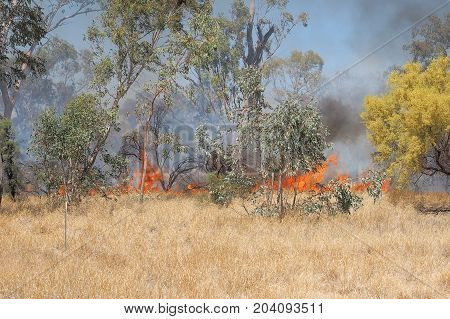 Grass fire near Alice Springs Northern Territory Australia 2017