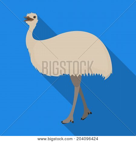 Bird, ostrich emu.African wild ostrich single icon in flat style vector symbol stock illustration .