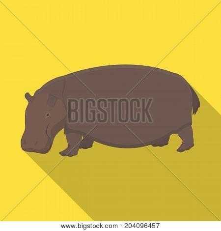 Hippopotamus, an omnivorous artiodactyl animal. The African great hippopotamus single icon in flat style vector symbol stock illustration .