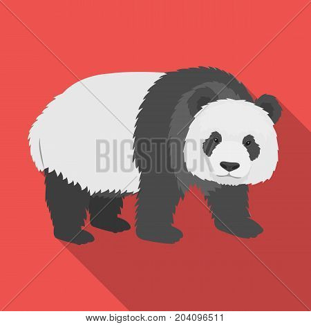 Panda, a bamboo bear. Panda, a rare species of animal single icon in flat style vector symbol stock illustration .