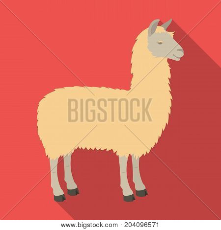 Lama, a South American pack animal. A lame, a cloven-hoofed mammal single icon in flat style vector symbol stock illustration .