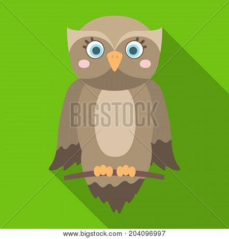 Owl, single icon in flat style.Owl, vector symbol stock illustration .