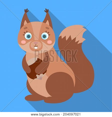 Squirrel, single icon in flat style.Squirrel, vector symbol stock illustration .