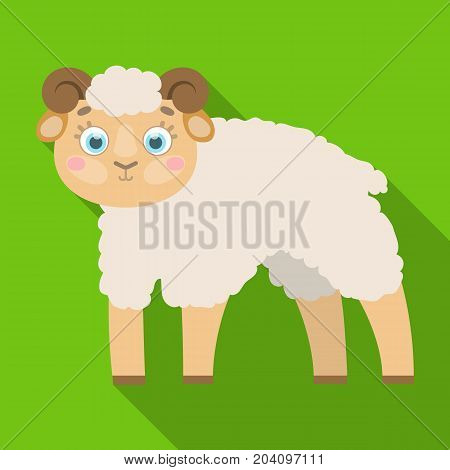 Sheep single icon in flat style.Sheep, vector symbol stock illustration .
