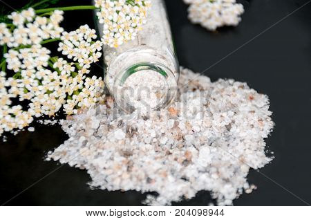 Yarrow And Bottle With Sea Salt On A Black Background