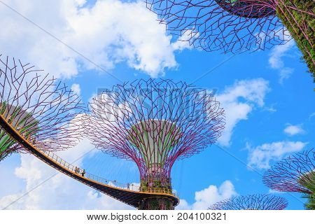 Unidentified Tourist Visited Skyway Of Gardens By The Bay At Singapore