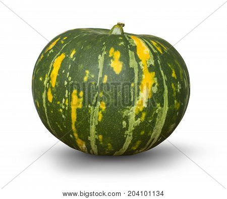 Fresh green pumpkin isolated on white background