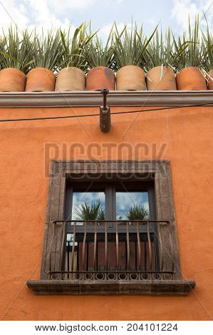 November 19 2014 San Miguel de Allende Mexico: potted plants decorating the roof of a colonial house in the popular expat destination colonial town