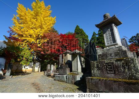 KYOTO, JAPAN - NOVEMBER 16, 2016 - Yellow ginkgos and red maples add color to an ancient cemetery of tombstones engraved with family names