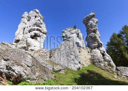 Beautiful limestone rock in Polish Jurassic Highland ( Krakow-Czestochowa Upland) Poland. It is geographic macroregion located in southern Poland one of the most attractive tourist regions in the country