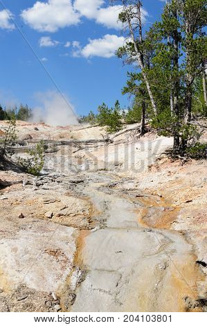 A steaming geyser in the Norris Geyser Basin in Yellowstone National Park