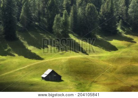 mountain hut on the green meadow with pine forest in the background and shadow