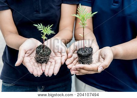 save earth save life by plant the tree environment concept