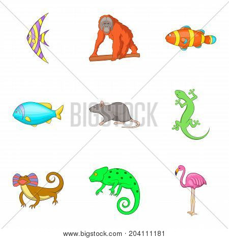 Earth fauna icons set. Cartoon set of 9 earth fauna vector icons for web isolated on white background
