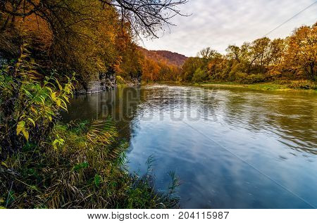 Forest River In Autumn Mountains At Sunrise