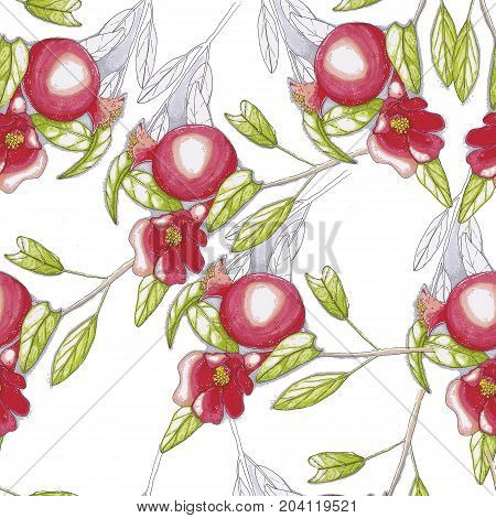 Raster image with pomegranate fruit and flower.