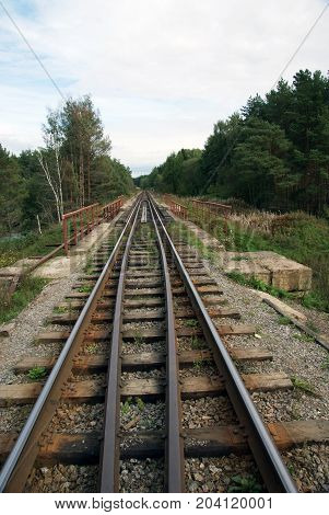 Rail journey in the forest. Tver oblast. Russia