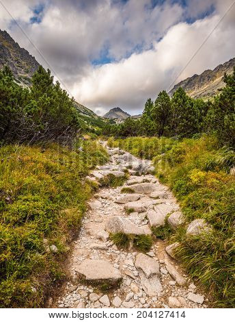 Rocky Hiking Trail in the Mountains with Mountain Peak on Cloudy Day. Mlynicka Valley High Tatra Slovakia.