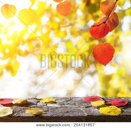 Autumn background with an empty wooden table and colored leaves
