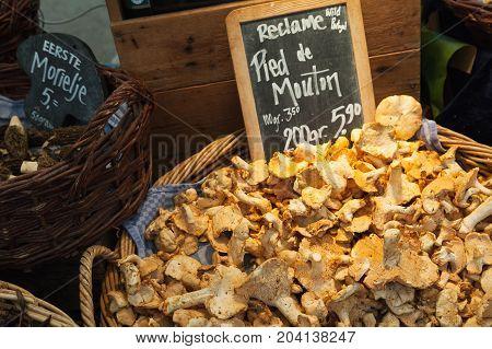 Hedgehog Mushrooms. Goods Of Outdoor Market