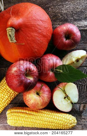 Thanksgiving - Pumpkin, Apples, And Maize On Wooden Background