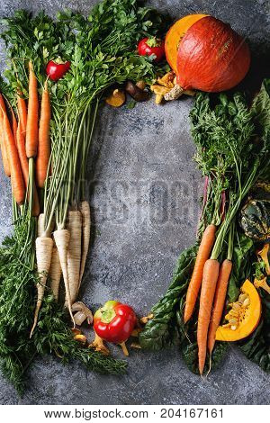 Variety of autumn harvest vegetables carrot, parsnip, chard, paprika, hokkaido pumpkin, chanterelles mushrooms as frame over gray texture background. Fall harvest concept. Top view with space