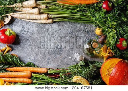 Variety of autumn harvest vegetables carrot, parsnip, chard, paprika, hokkaido pumpkin, mushrooms, olive oil, salt as frame over gray texture background. Cooking concept. Top view with space