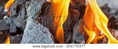 Fire And Coals Close Up. Burning Fire Bright Flames. Hot Charcoal Briquettes.