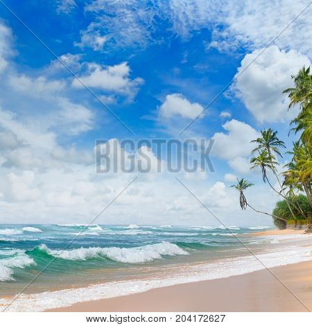tropical ocean sandy beach and blue sky