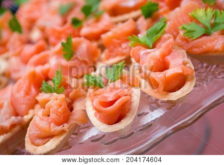 Tartlet with salmon . Shallow depth-of-field , close up meal
