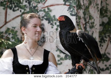 gloved woman holding a white-naped raven ** note: slight blurriness, best at smaller sizes poster