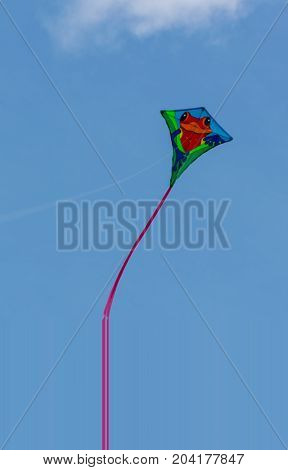 Kite With Red Frog Picture