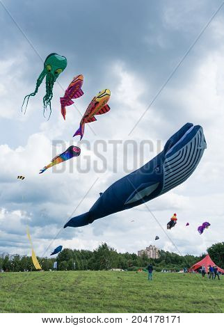 Kites Of The Shape Of Fish And Sea Monsters