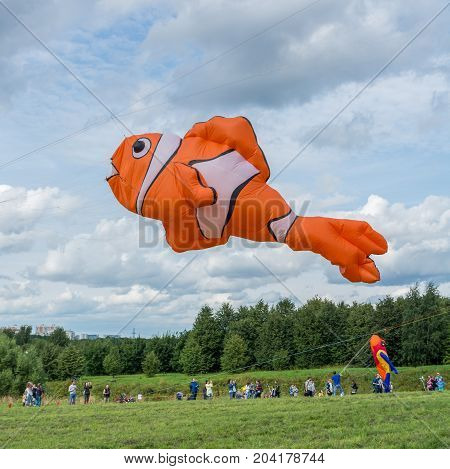 Orange and White Clownfish Kite flying in the sky over the meadow at the Kite Festival