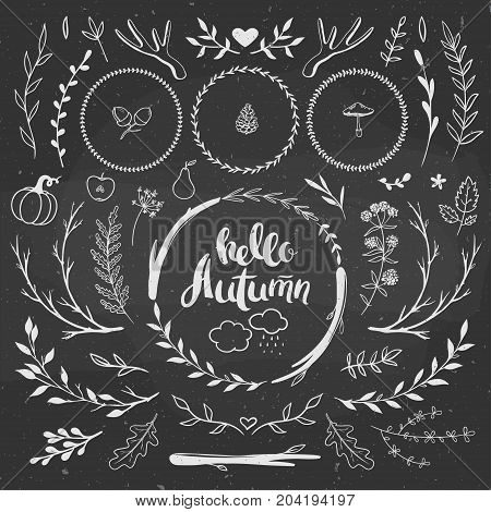 Autumn set hand drawn on a chalkboard. Seasonal fall decorations - wreaths leaves berries pumpkin apple mushrooms. Vector decorative set.