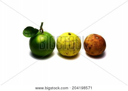 Three Of Lemons ,the Fresh ,the Old And The Rotten On White Background Isolated