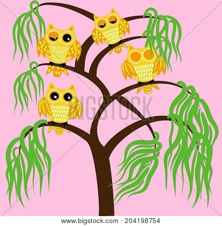 Four Yellow Owls On A Tree Branch: Sleeping, Awake, Two With Half-open Eyes