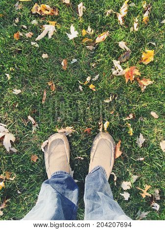 Man standing in lawn during the autumn season