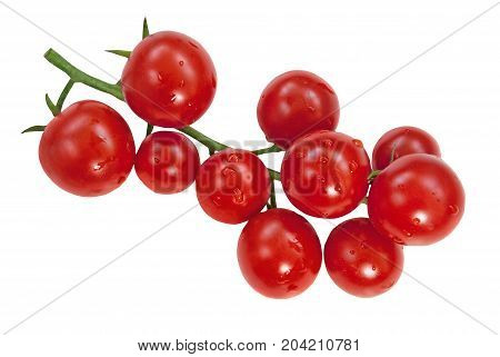 Cherry tomatoes branch isolated on a whte background