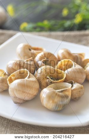 Portion of cooked snails on the wooden background