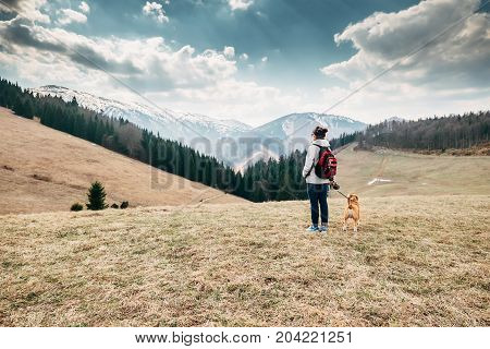 Spring autumn turistic time - woman with beagle dog on mountain walk
