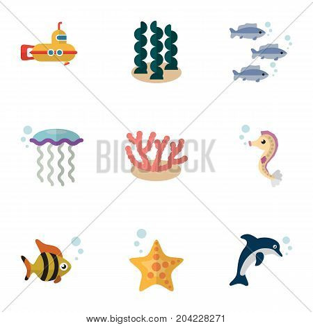 Flat Icon Nature Set Of Hippocampus, Periscope, Sea Star And Other Vector Objects