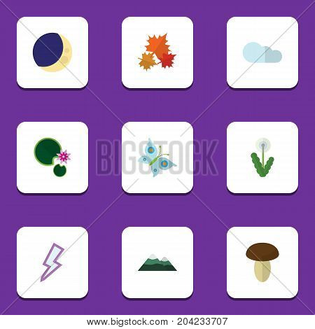 Flat Icon Natural Set Of Half Moon, Floral, Canadian And Other Vector Objects