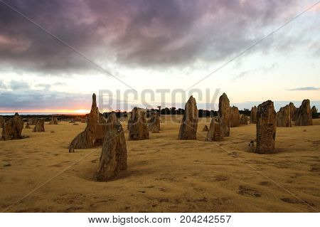 The Pinnacles are limestone formations appearing from the sand of the Nambung National Park, Western Australia