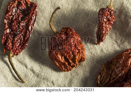 Super Hot Spicy Scorpion Bhut Jolokia Pepper