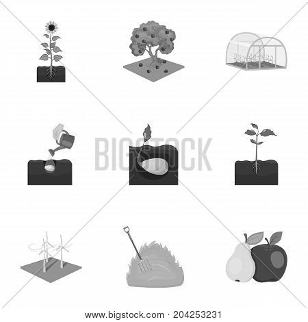 farm, garden, nature and other web icon in monochrome style.