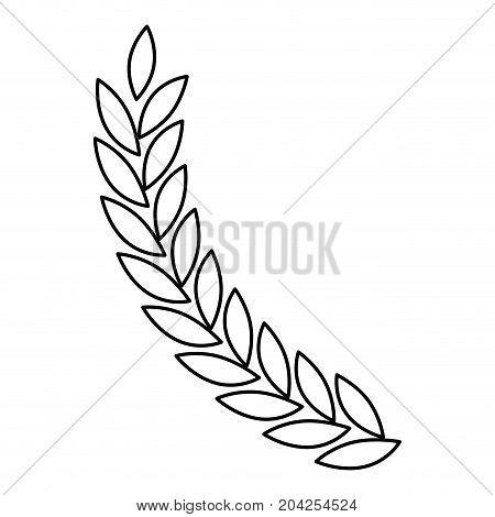 olive branch closeup in monochrome color vector illustration