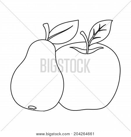 Fruit single icon in outline style .Fruit, vector symbol stock illustration .