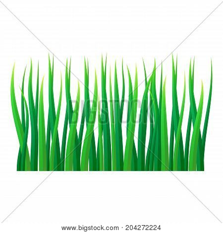 Lawn grass icon. Realistic illustration of lawn grass vector icon for web design isolated on white background